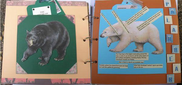 Helen's Favourite wild animals CJ Cathspages