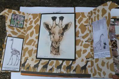 Helen's Favourite wild animals CJ Cynthiaspagesopen