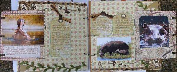Helen's Favourite wild animals CJ Karelynspagesopen