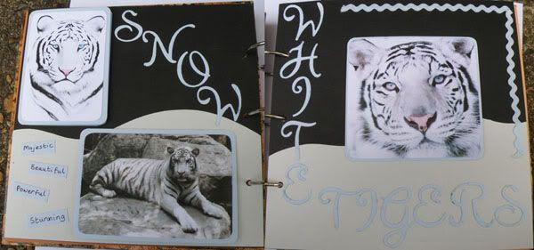 Helen's Favourite wild animals CJ Mypages1