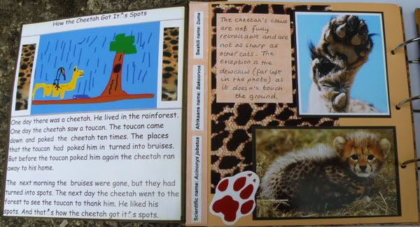 Helen's Favourite wild animals CJ Stephspagesopen
