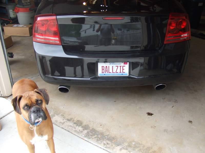 Ballzie gets Ballzier! DSCF1632