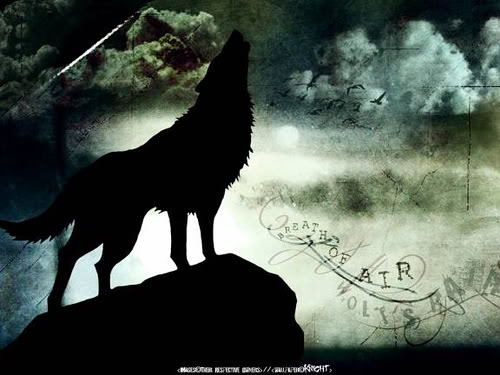 wolfs rain 7 Pictures, Images and Photos