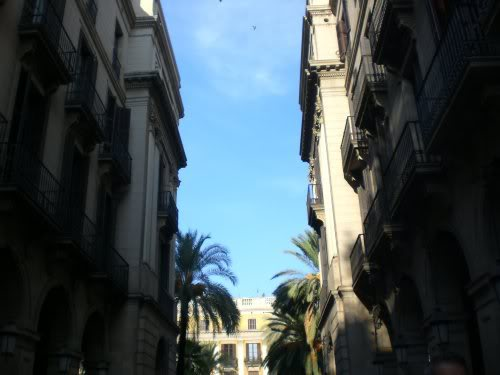 La Sombra del Viento Barcelona022