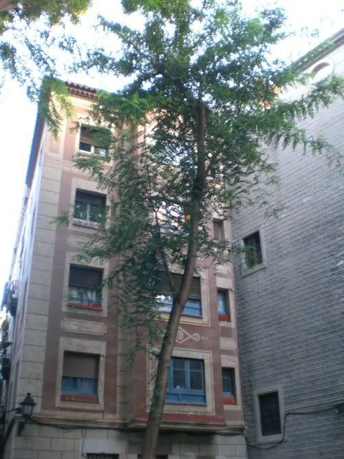 La Sombra del Viento Barcelona056