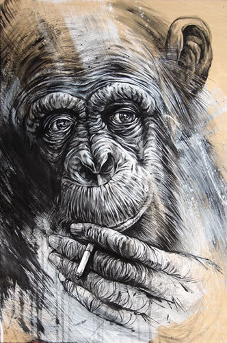 the last person to post here wins - Page 4 Smoking-chimp