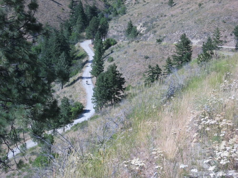 Any single track between Lk CHelan and Pateros/ general vacinity IMG_2043k