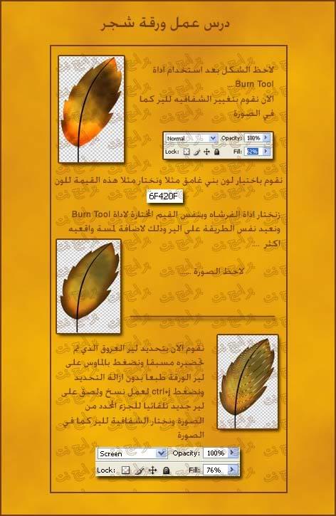 كيفية تصميم ورقة شجر 1a9b860ec3
