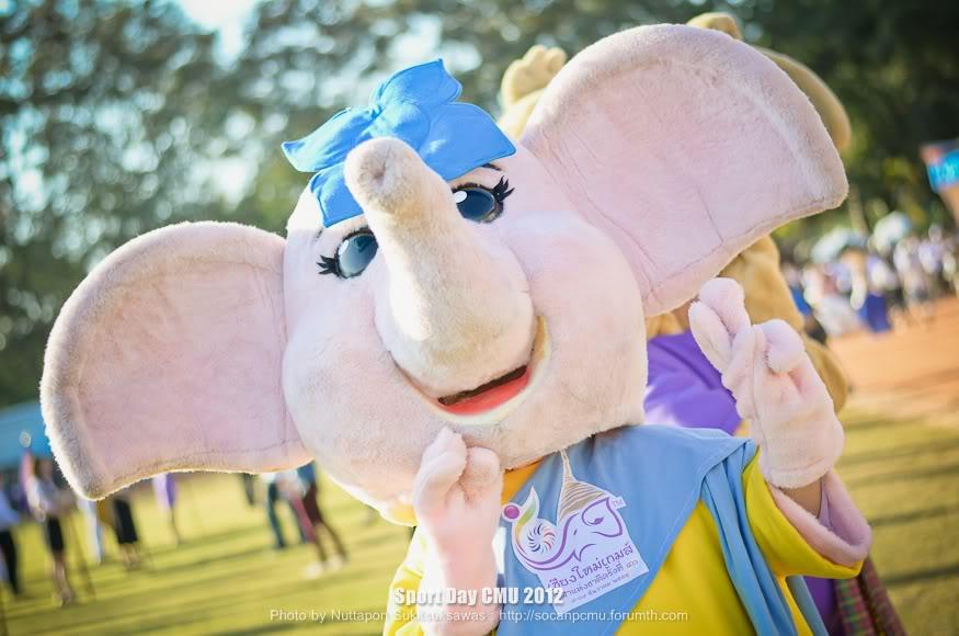 รูปงาน Sport day CMU 2012 SPD2012_033