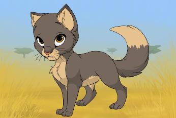 Anima City Kitty