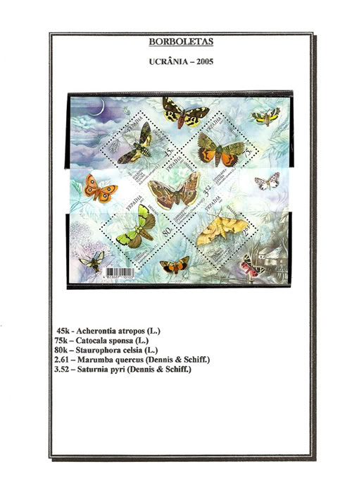 Ma Collection de Papillons Borb01