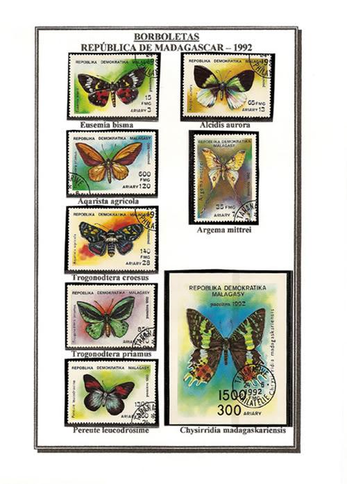 Ma Collection de Papillons Borb07