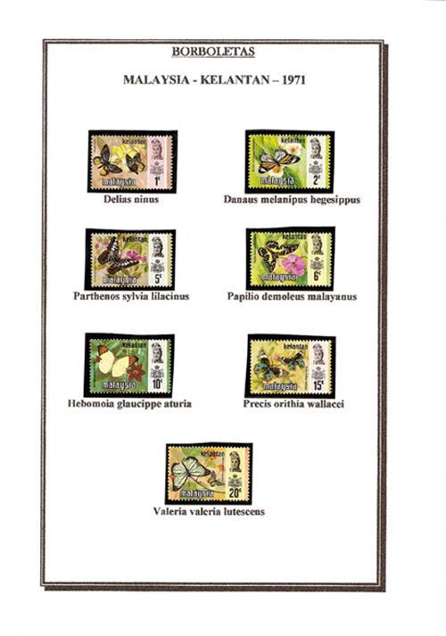 Ma Collection de Papillons Borb10