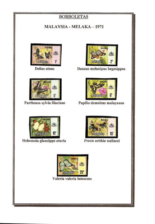 Ma Collection de Papillons Borb11