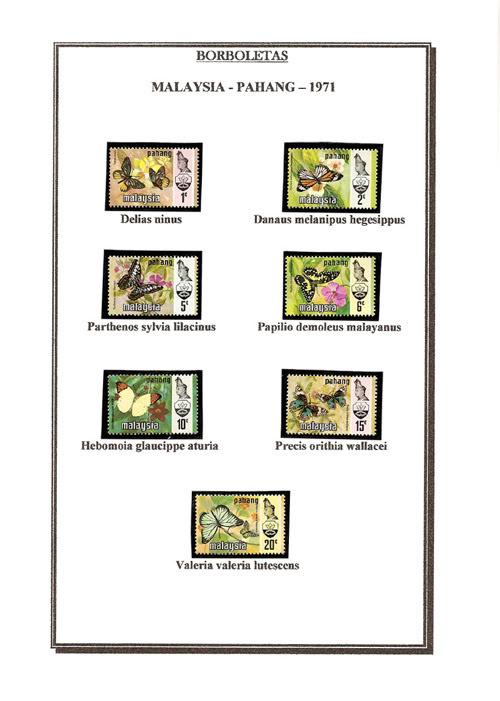 Ma Collection de Papillons Borb13