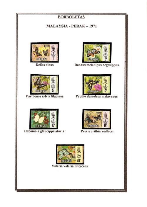 Ma Collection de Papillons Borb14
