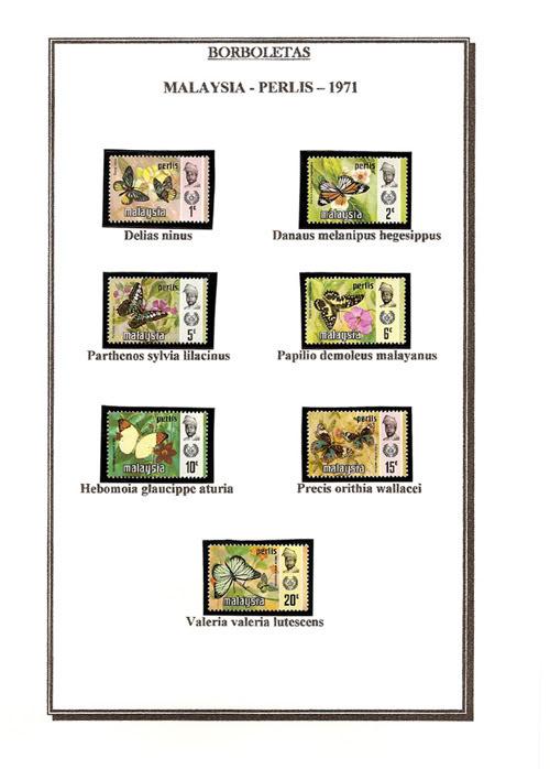Ma Collection de Papillons Borb15