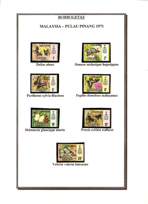 Ma Collection de Papillons Borb16