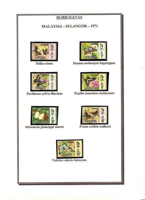 Ma Collection de Papillons Borb19
