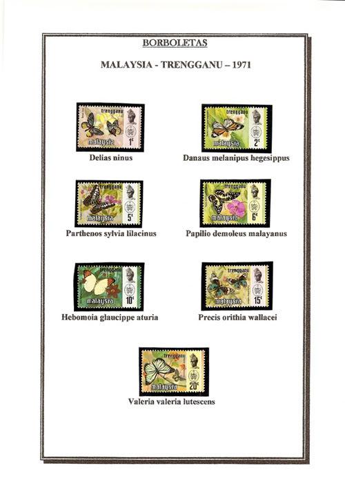 Ma Collection de Papillons Borb20