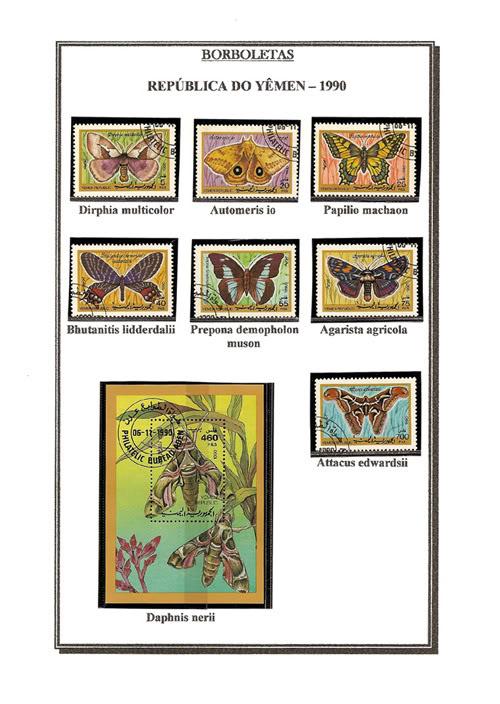 Ma Collection de Papillons Borb21