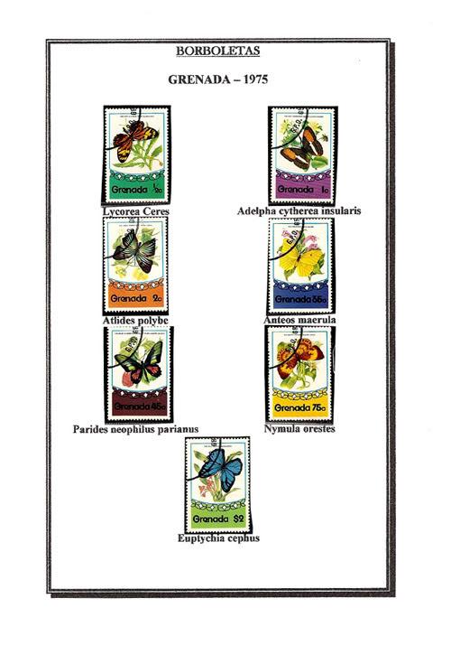 Ma Collection de Papillons Borb28