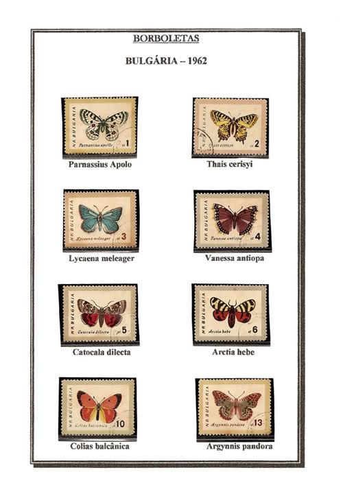 Ma Collection de Papillons Borb29