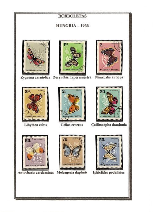 Ma Collection de Papillons Borb30