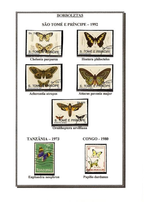 Ma Collection de Papillons Borb33