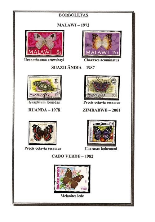Ma Collection de Papillons Borb34