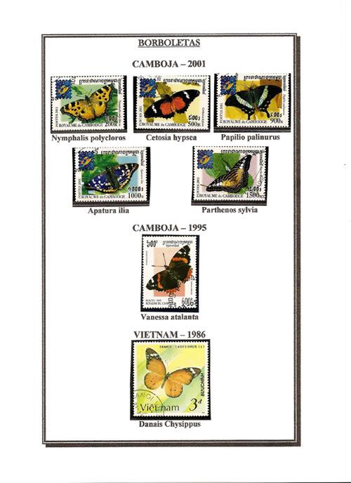 Ma Collection de Papillons Borb40