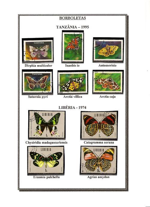 Ma Collection de Papillons Borb41