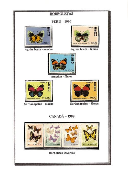 Ma Collection de Papillons Borb43