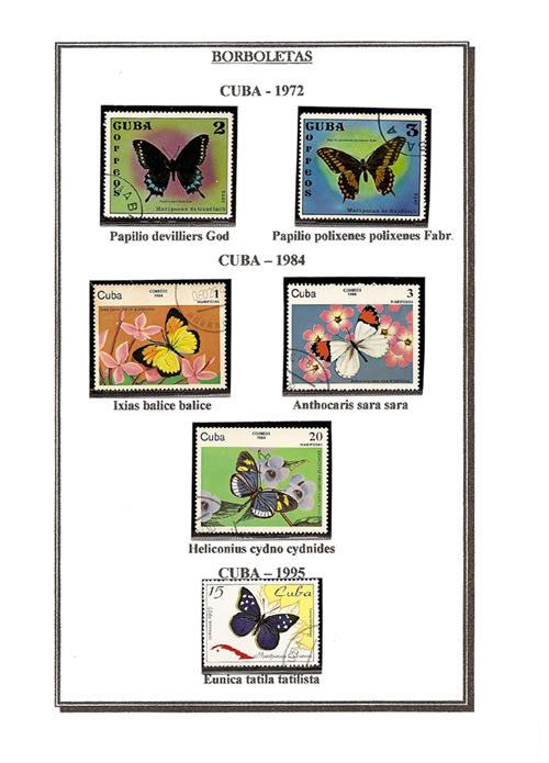 Ma Collection de Papillons Borb47