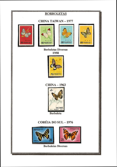 Ma Collection de Papillons Borb49