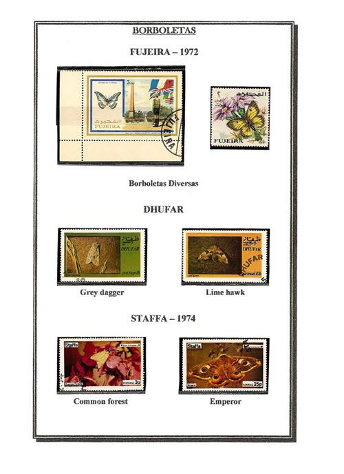 Ma Collection de Papillons Borb50