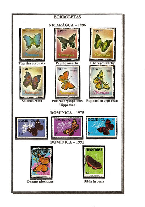 Ma Collection de Papillons Borb51