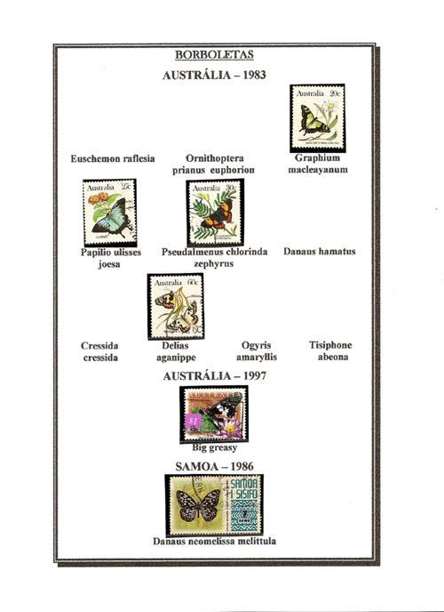 Ma Collection de Papillons Borb53