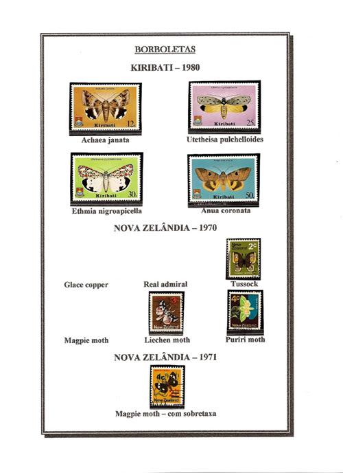 Ma Collection de Papillons Borb54