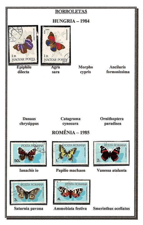 Ma Collection de Papillons Borb57