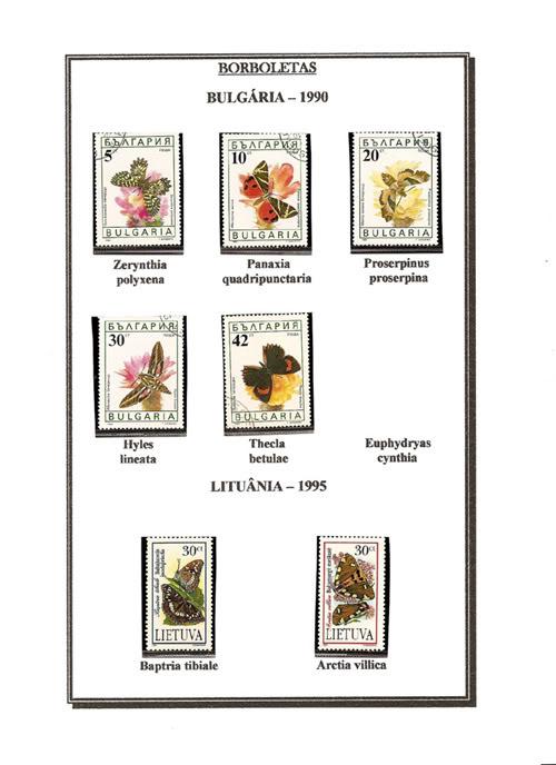 Ma Collection de Papillons Borb58