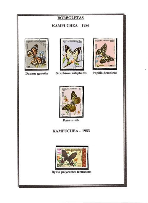 Ma Collection de Papillons Borb62