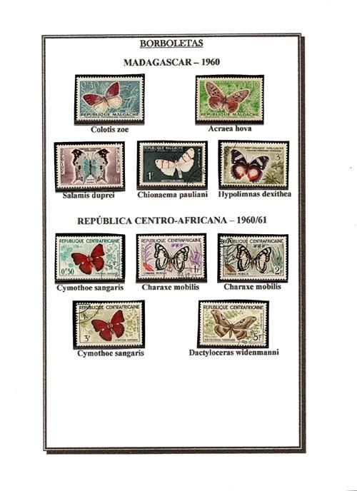 Ma Collection de Papillons Borb64