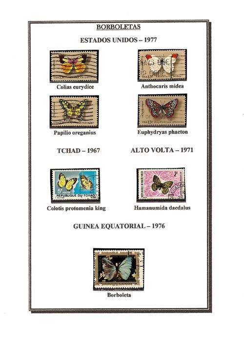 Ma Collection de Papillons Borb65