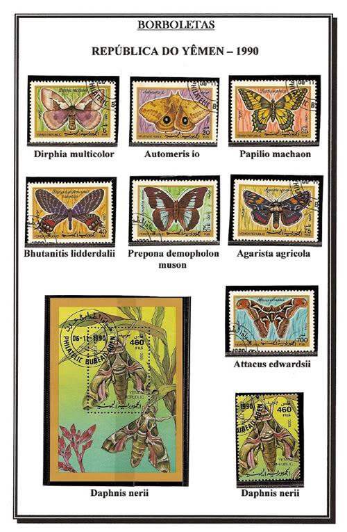 Ma Collection de Papillons Borb71