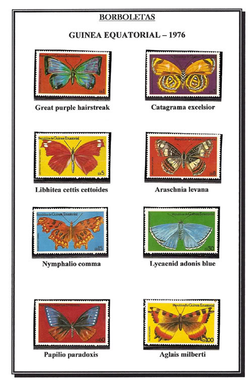 Ma Collection de Papillons Borb72