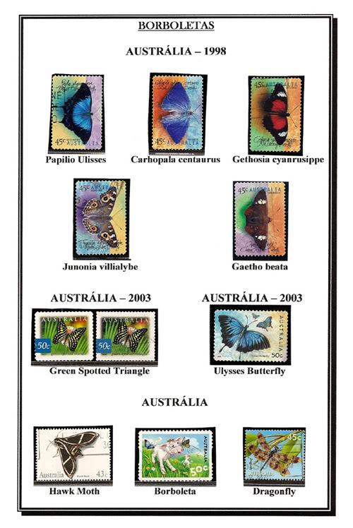 Ma Collection de Papillons Borb75
