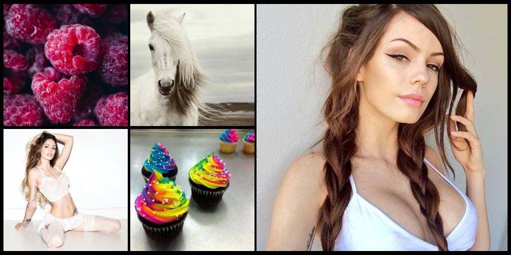 Adrienne Colette Cabaret [Centaur/Were-pony] Collage_zpsa9jrwcfe