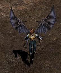 Alas Para Blade Knight AsasBk7-Dark