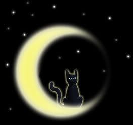 [colectivo]Por algo pasan las cosas ¬¬ Gato_luna